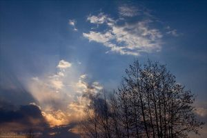 Under The Blue Sky by rici66