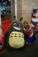 Sailor Moon and Totoro by miss-a-r-t