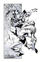 Wolverine Sabertooth BWG by JasonConrad