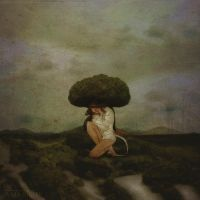 The Book Zen by AnjaMillen