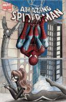 Marvel - Spider-Man/Spider-Girl Sketch Comic Cover by DenaeFrazierStudios
