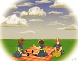 Guinea pigs on picnic trip by Bjirf