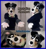 Australian Shep Partial by PlushiePaws