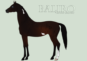 Baliro Import Dark dappled bay overo by kalmanen