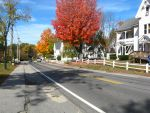 fall on the main drag by crazygardener