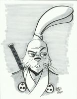 12 Days of Geeksmas 2013 #04: Usagi Yojimbo by erikburnham