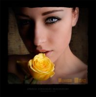 Yellow Rose by Stridsberg