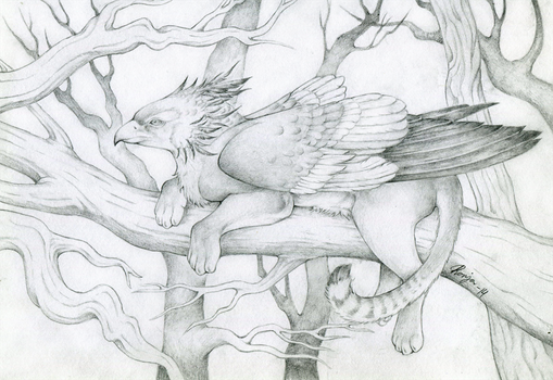 Gryphon in a tree by QuicksilverCat