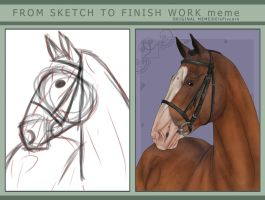 Sketch to finished work meme- by WB-Equine-Art