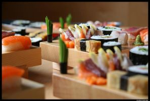 Sushi by SmirkingMan