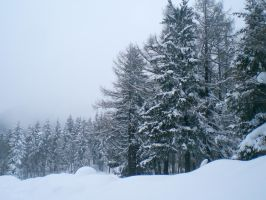 Austrian Winter 4 by LuDa-Stock