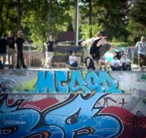 vienna bowlrideres 2012 #2 by thePartisan