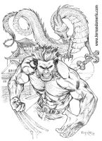 Wolverine and Dragon by fernandomerlo