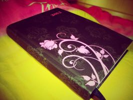 Diary by Laura-in-china