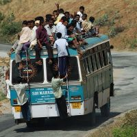 Sardine Bus by NitaiG