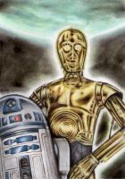 C-3PO and R2-D2 by TeleGabor