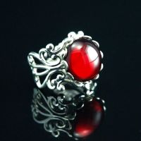 Ruby Jeweled Silver Ring by Cori35