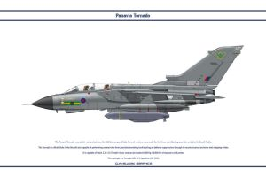 Tornado GB 9 Sqn 1 by WS-Clave