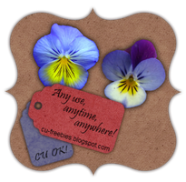 Blue-Toned Pansies -CU Freebie by Kathery