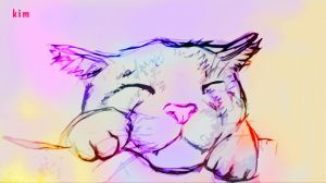 sleeping cat by Toma07