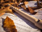 Autumn Melodies: Music for the eyes. by abravewolf