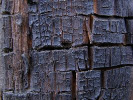 Blackened wood texture by AnnFrost-stock