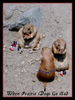 When Prairie Dogs Go Bad by spamboy