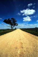 Dirt Road 1896753 by StockProject1