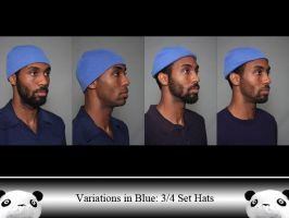 ViB 3/4 Sets Hats by Ahrum-Stock