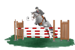 Shady Gray Showjumping by horserider10