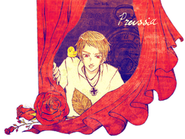 Red Roses: Prussia by Enderkichi