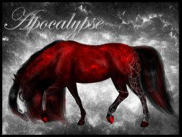 DBS Apokalypse by Wild-beauty