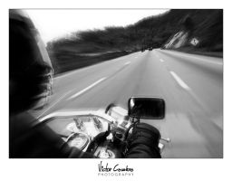 Racin' with the Wind by byCavalera