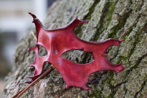 Red Oak Leaf Leather Mask by OsborneArts