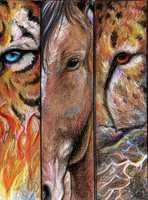 Eye Bookmarks by animalartist16