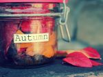 Essence of autumn by Lilith1995