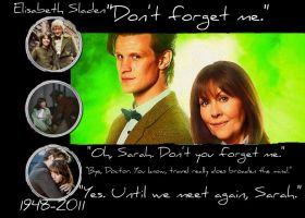 Goodbye, Sarah Jane by UniversalOpera