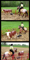 Breyer - Herding The Hereford by The-Toy-Chest