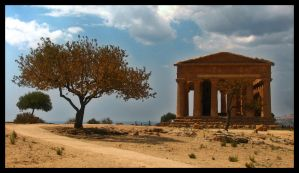temple and tree by chrisdarmanin
