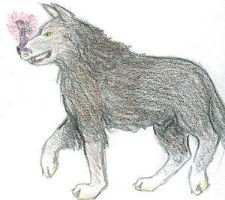 Wolf and Fairy by thegreenmoon by Remus-Lupin-Fanclub