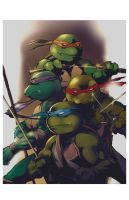 Ninja turtles colors by GIO2286