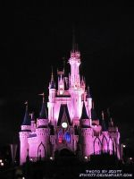 Cinderella's Castle at Night by sth1977