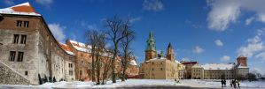 Panorama of Wawel, polish kings castle by jufik