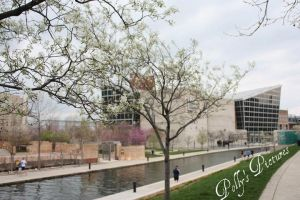 Flowers Around the Canal by Amb08