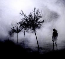fog III by metindemiralay