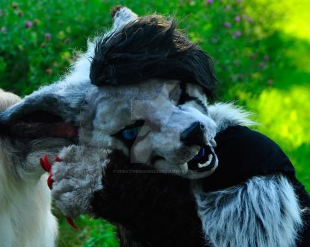 Halifax furmeet 2015 #3 by Creativeimaginez