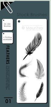 Brush Pack - Feathers by MouritsaDA-Stock