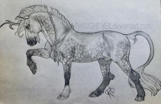 Fire Tail In Pencil by Twilight-Veil