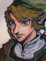 Link Twilight Princess(close up) by TheDorkyDerpster