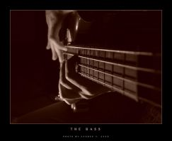 The Bass No.2 by cagdasyoldas